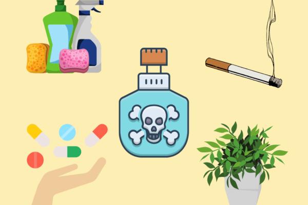 Vergiftung bei Kindern – verhindern und richtig reagieren