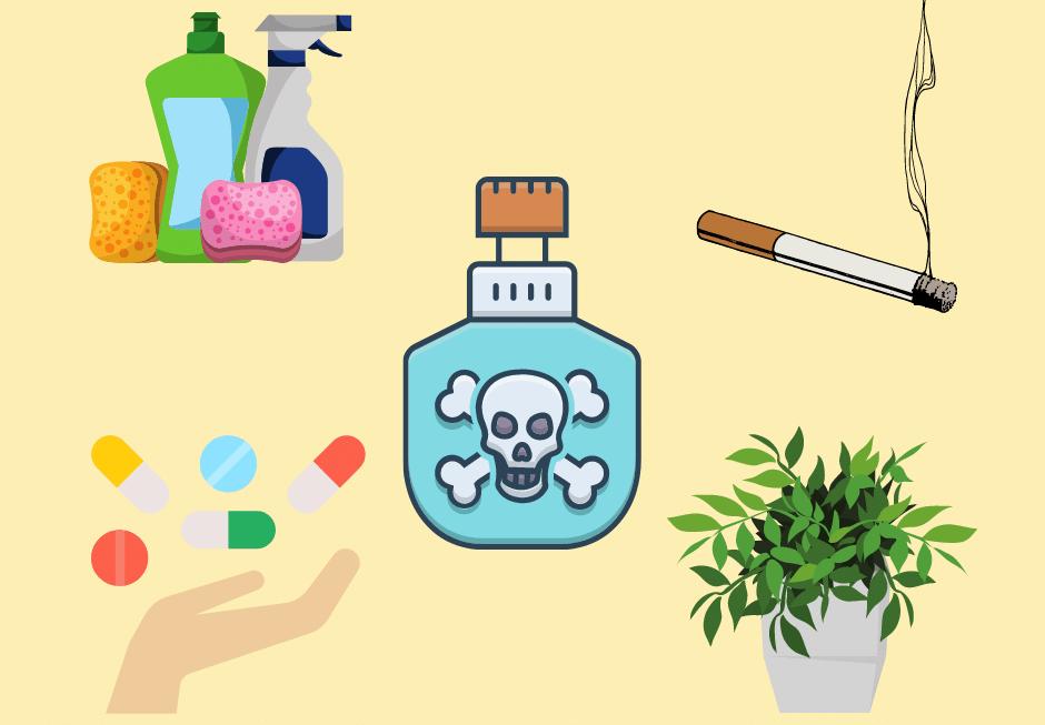 Vergiftung bei Kindern